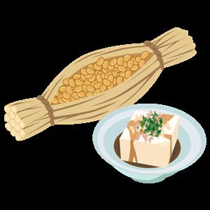 natto and tofu